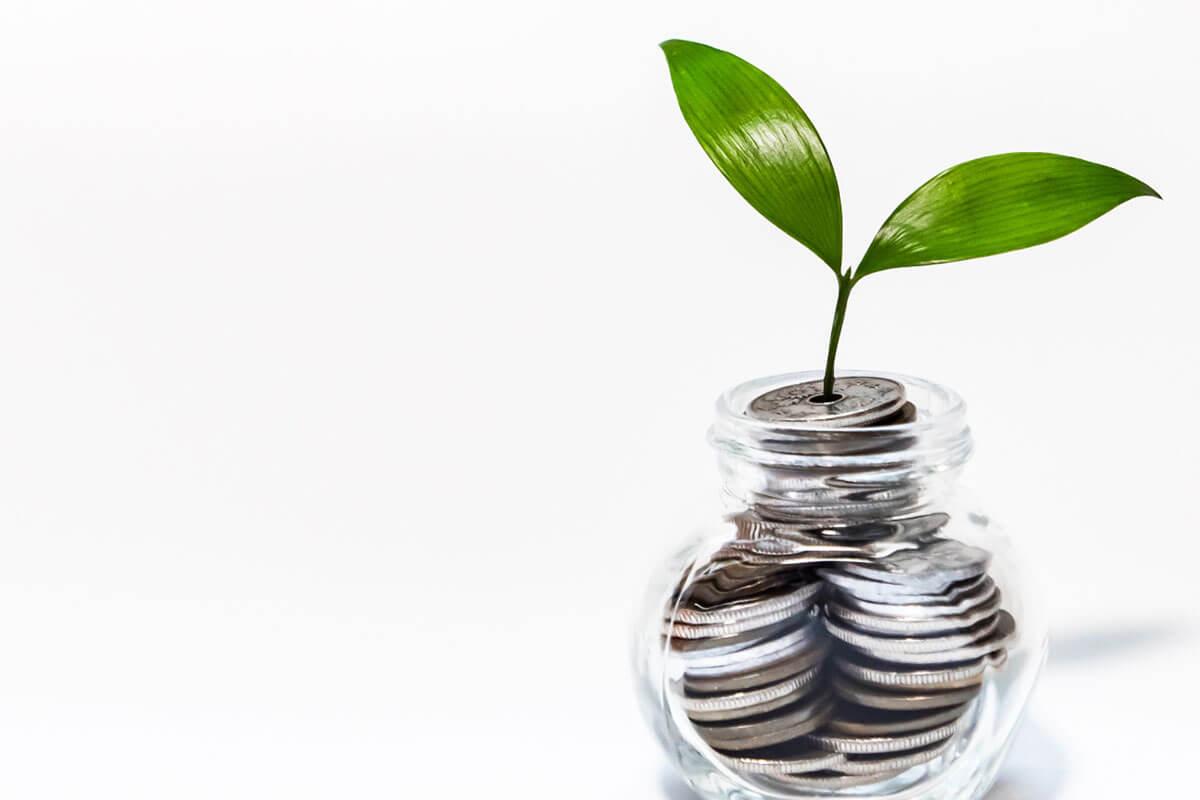 NISA非課税金のなる木イメージ