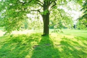過呼吸・過換気症候群予防深呼吸イメージ